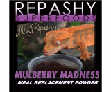 Mulberry Madness Gecko Diet